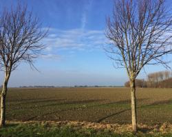 Een ontspannen dagje Friesland!